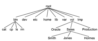 Unix directory structure - Knowino