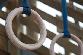picture of diy wooden olympic gymnastic crossfit rings