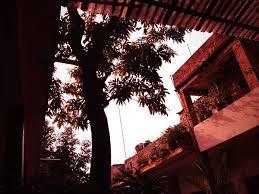 benjamin Guadarrama Benitez | Flickr
