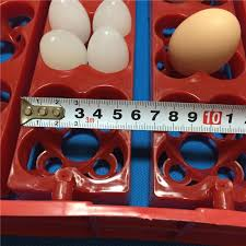 24 eggs 96 bird eggstray birds automatic incubator duck and goose pigeon quail egg tray default