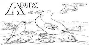 avian wing coloring the daily art of lemurkat avian alphabet 1