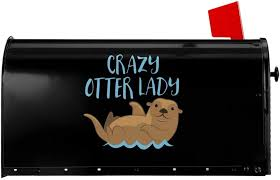 Shower Grab Bars <b>Crazy Horse Lady</b> Novelty Mailbox Covers ...