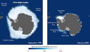 antarctic ice sheet growing world of change antarctic sea ice feature articles