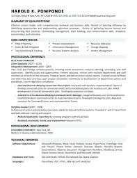 Business System Analyst Resume Computer System Analyst Sample Resume Beauteous Business Resumes