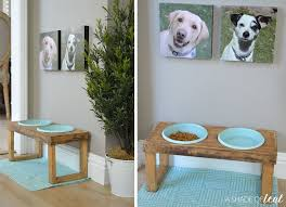 having a designated dog food area has become a priority in my home we tend to move the bowls all over the place to either keep my daughters from playing