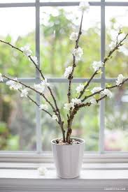 Paper Flower Branches Tissue Paper Flower Blooming Branches Crafts To Do Pinterest