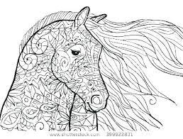 Horse Coloring Pages Baby Horse Coloring Pages Realistic Horses Page