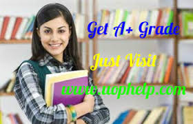 essay my favourite book english notes