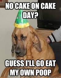 Sad Birthday Dog memes | quickmeme via Relatably.com