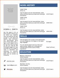 Resume Template Microsoft Word Basic Templates Excel Examples Ex