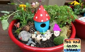 Small Picture Fairy dish gardens