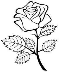 Small Picture Coloring Pages Draw A Rose For Kids Fabulous Free Roses Printable