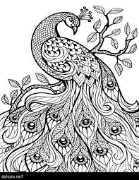 Animal Mandala Coloring Pages Free Printable Free Coloring Page