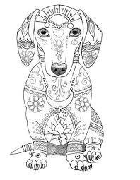 Share them with your family and friends. Cute Dog Coloring Page Dog Coloring Page Animal Coloring Pages Puppy Coloring Pages