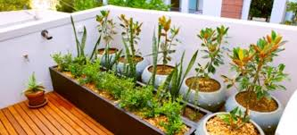 balcony gardens. Even The Smallest Patios Or Apartment Balconies Can Be Transformed Into Small Garden Sanctuaries. With A Little Forethought And Love For Plants, Balcony Gardens 3