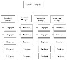 Organization Structures In Project Management Project Management Hut
