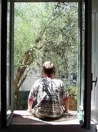Jendela Pria Dari Belakang Olivo · Foto gratis di Pixabay