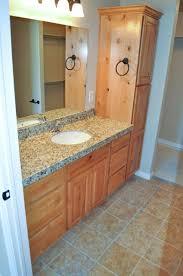 Cabinet Designs For Bathrooms Impressive Inspiration Design
