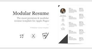 Free Pages Resume Templates Iwork Pages Resume Templates Outstanding Best Ideas On Signup 27