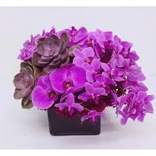 Purple Orchids and Succulents Extravaganza Truly Opulent Luxury Flowers