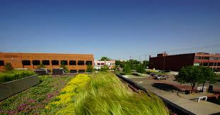 green roofs in oklahoma