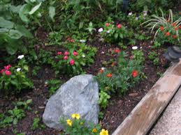 backyard gardens. Ways To Make Your Small Yard Look Bigger Backyard Garden Best Yards Way For Noddy On Gardens