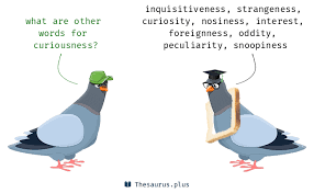Synonyms for curiousness