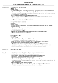 Server Resume Duties Catering Server Resume Samples Velvet Jobs 20