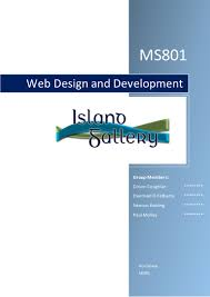 Web Design Courses Galway Web Design And Development Ms801