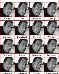 The Baboons Guide To The Internet Steven Seagal Emotion Chart