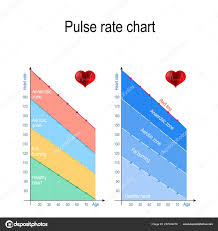 Pulse Rate Chart Healthy Lifestyle Maximum Heart Rate