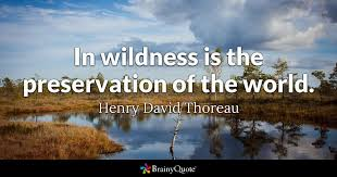 Thoreau Quotes Delectable In Wildness Is The Preservation Of The World Henry David Thoreau