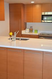 Cabinet Crafters Inc Contemporary Euro Kitchen