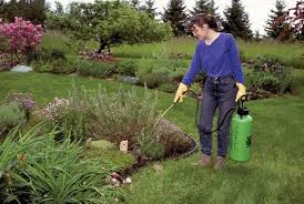 garden pesticides. Osu Guide Shows How To Use Pesticides Safely At Home Oregon Garden G