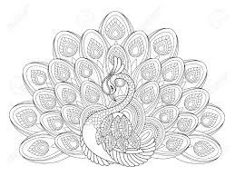 Small Picture peacock coloring pages for adults 100 images peacock coloring
