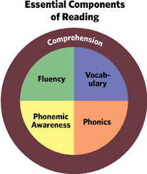 5 Components Of Reading Chart Five 5 Components Of Reading Read Naturally Inc