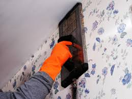How to Remove Wallpaper Using Solvents ...