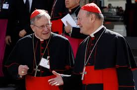 Image result for german bishops synod