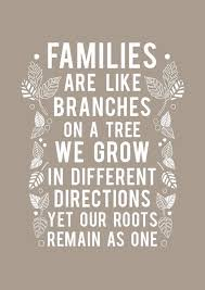 Family Quotes Cool Family Quotes Family Quotes Pinterest Inspirational Thoughts