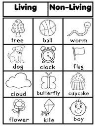 1000+ images about Living & Non Living Unit (Science) on Pinterest ...1000+ images about Living & Non Living Unit (Science) on Pinterest | Living and nonliving, Science and Preschool science