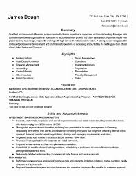 Accounts And Finance Resume Format Awesome Acting Resume Examples