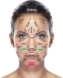 Chinese Medicine Face Reading Chart Face Mapping According To Traditional Chinese Medicine