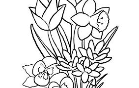 Alleen Kleurplaten Lente Bloemen Krijg Duizenden Kleurenfotos Van