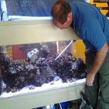 Image result for best service aquarium cleaners providers