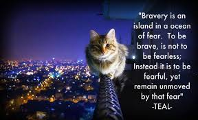 Brave Quotes Adorable Bravery Sayings And Quotes Best Quotes And Sayings