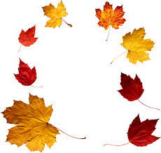 autumn png leaf