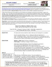 Great Resume Format Examples Examples Of Resumes Proper Resume Format 24 For 24 Marvellous 21
