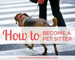 How To Become A Professional Pet Sitter