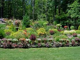 entertaining landscape edging composite for popular landscaping house comfy lawn ideas home depot and dallas