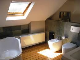 Attic Remodeling Ideas Attic Bathroom Ideas Buddyberriescom